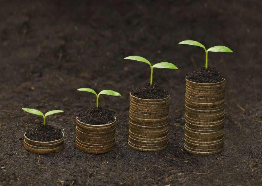 Você sabe o que é sustentabilidade financeira?