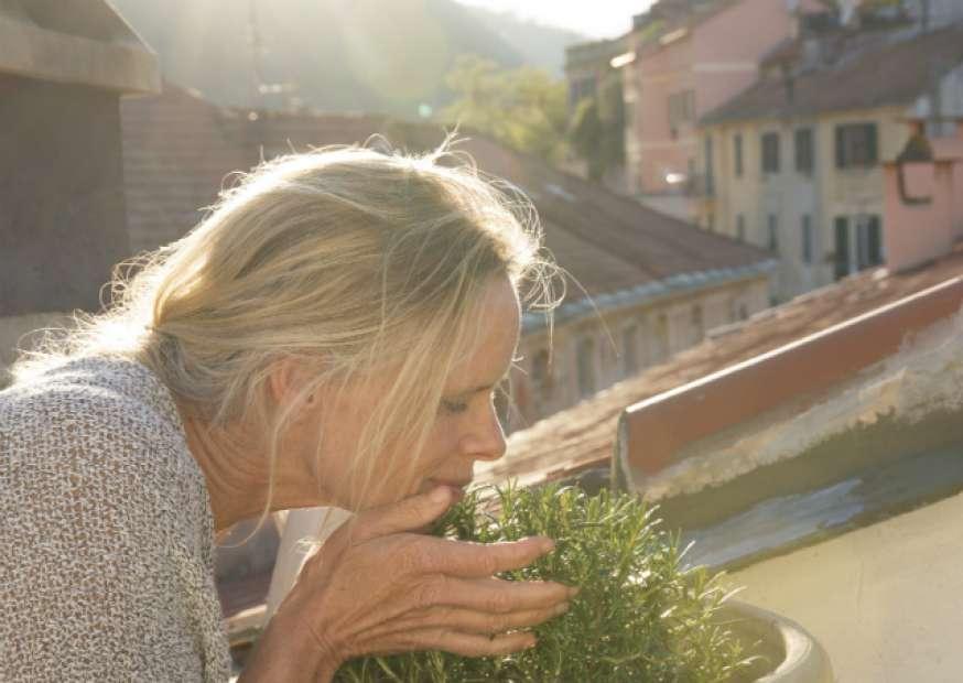 11 passos para viver a vida plenamente