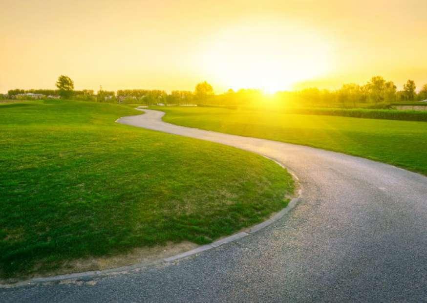 Por que insistimos em trilhar caminhos que sabemos que são errados?