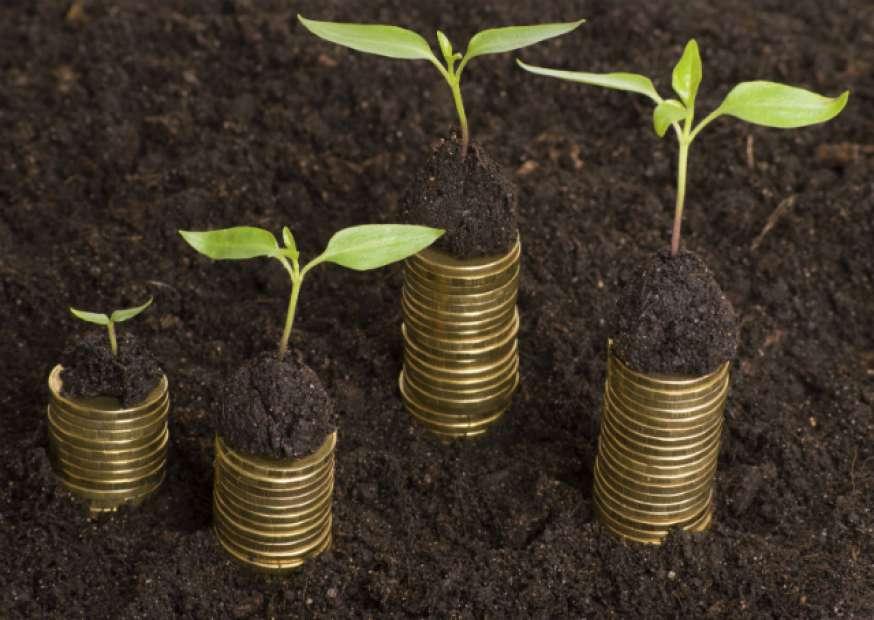 Redução sustentável de custos na crise
