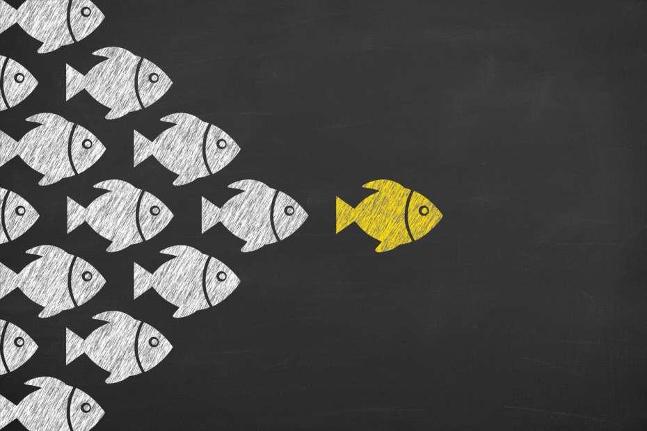 Conheça as 5 leis da persuasão para convencer qualquer pessoa