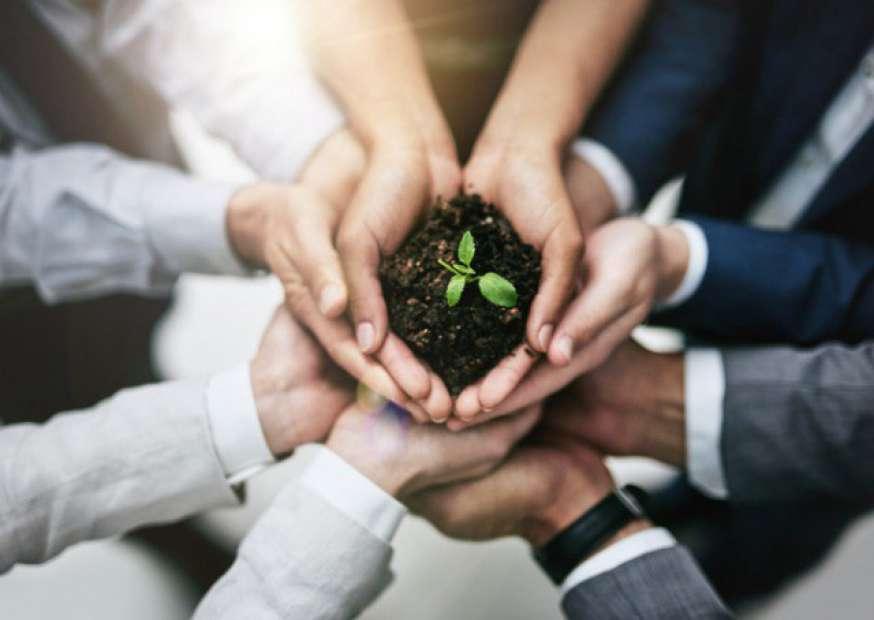 Empresas devem pensar em questões sociais e não somente em empregos e impostos