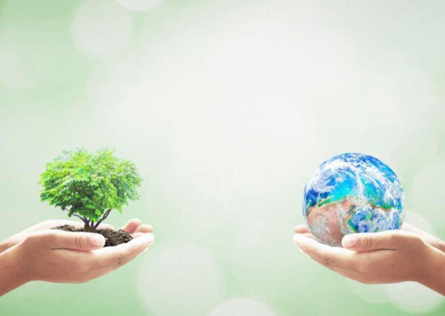 Como alinhar os desafios de procurement com sustentabilidade na área de compras?