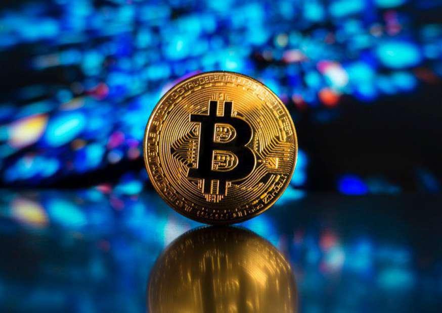 Por que não podemos comparar Bitcoin às Tulipas