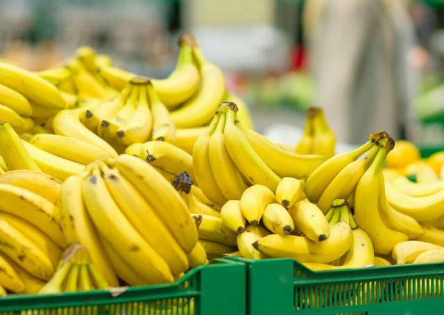 Cocaína é encontrada em supermercados alemães dentro de caixas de banana