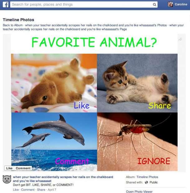 Facebook vai filtrar mensagens de spam e postagens repetidas