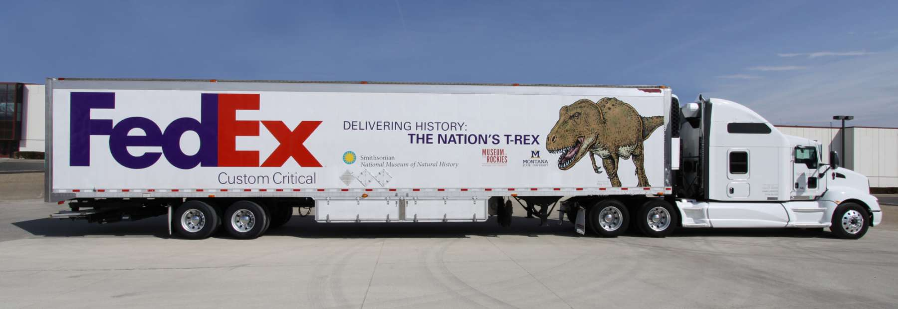 FedEx transporta esqueleto raro de T. Rex ao Museu Smithsonian