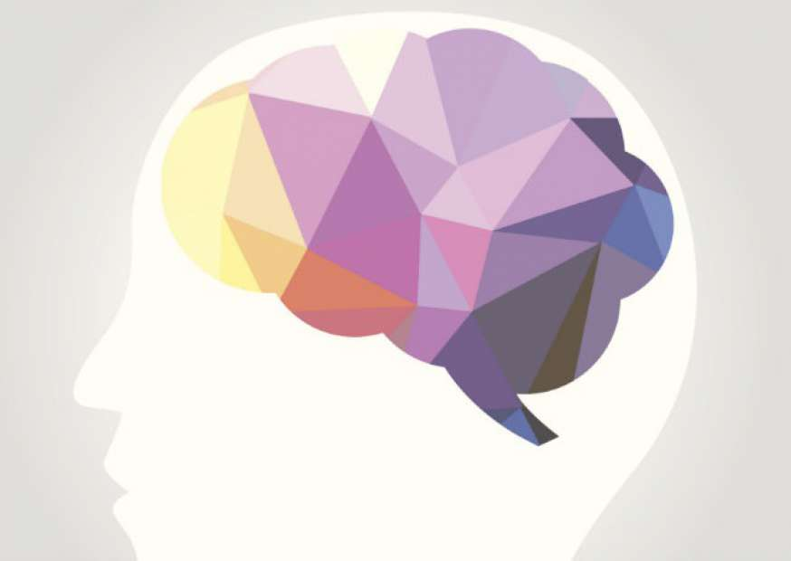 O cérebro e a liderança