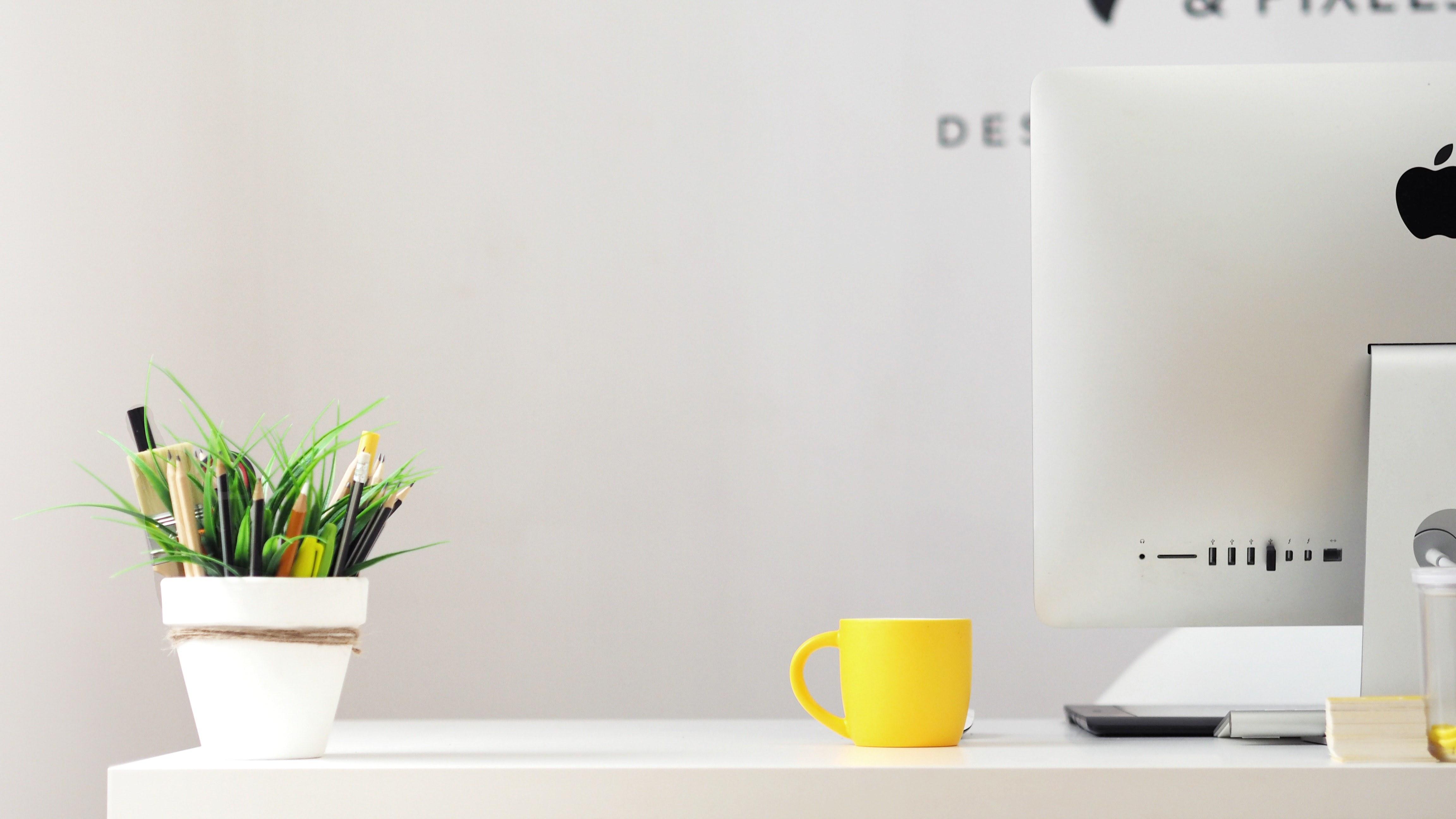 10 dicas de marketing digital para 2019