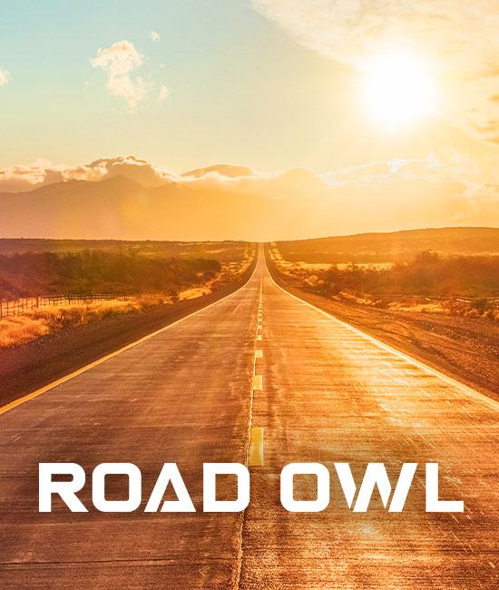 Road Owl Pop Top