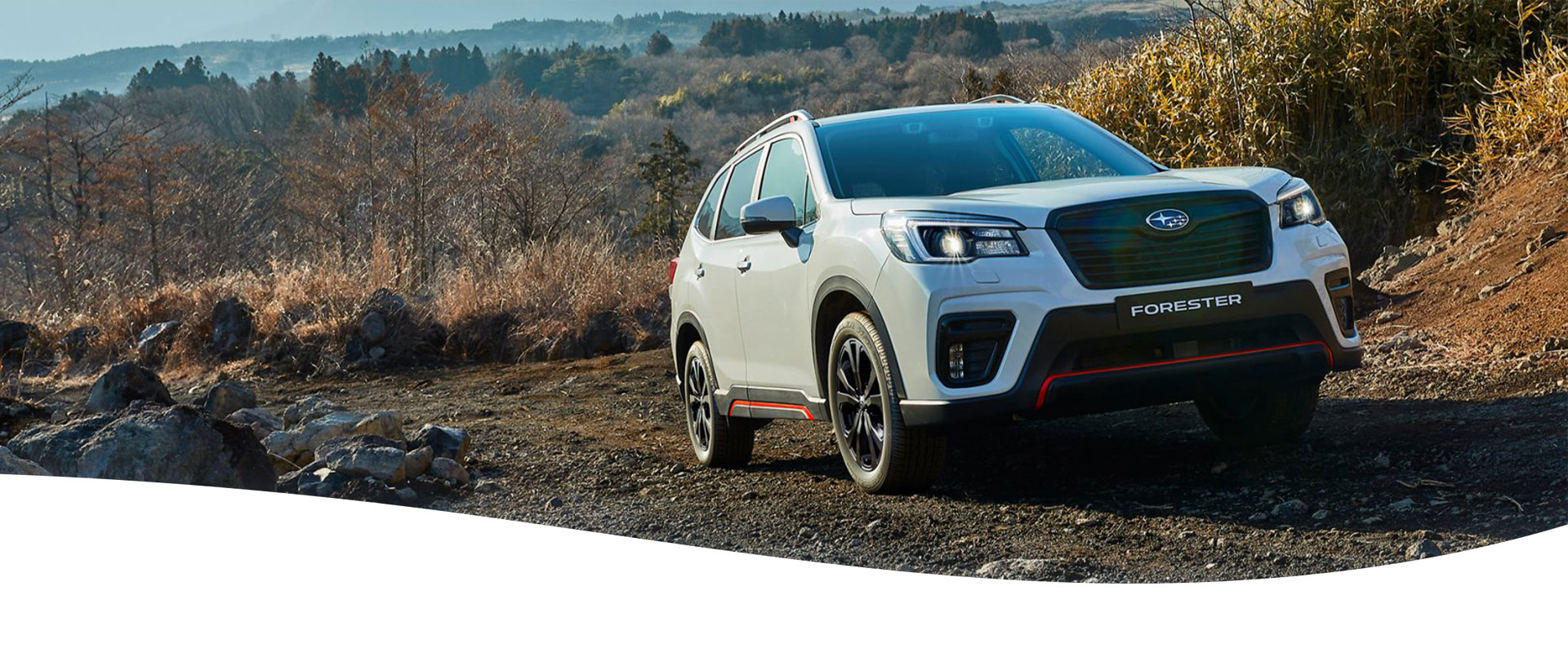Forester X