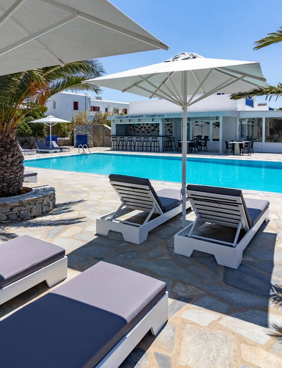 The sunbeds by the pool of the Daylight Wing, with the palm trees and the pool bar in the background
