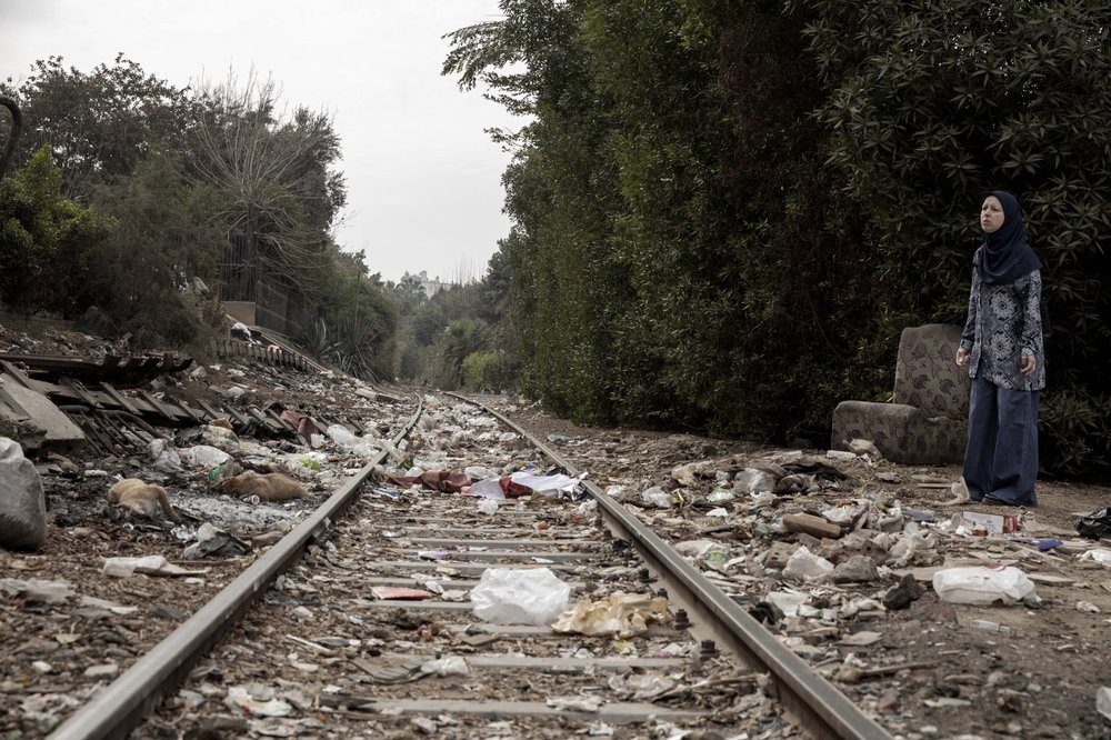 Carcasses of poisoned street dogs on the railway tracks outside Cairo. (AP Photo/Nariman El-Mofty)