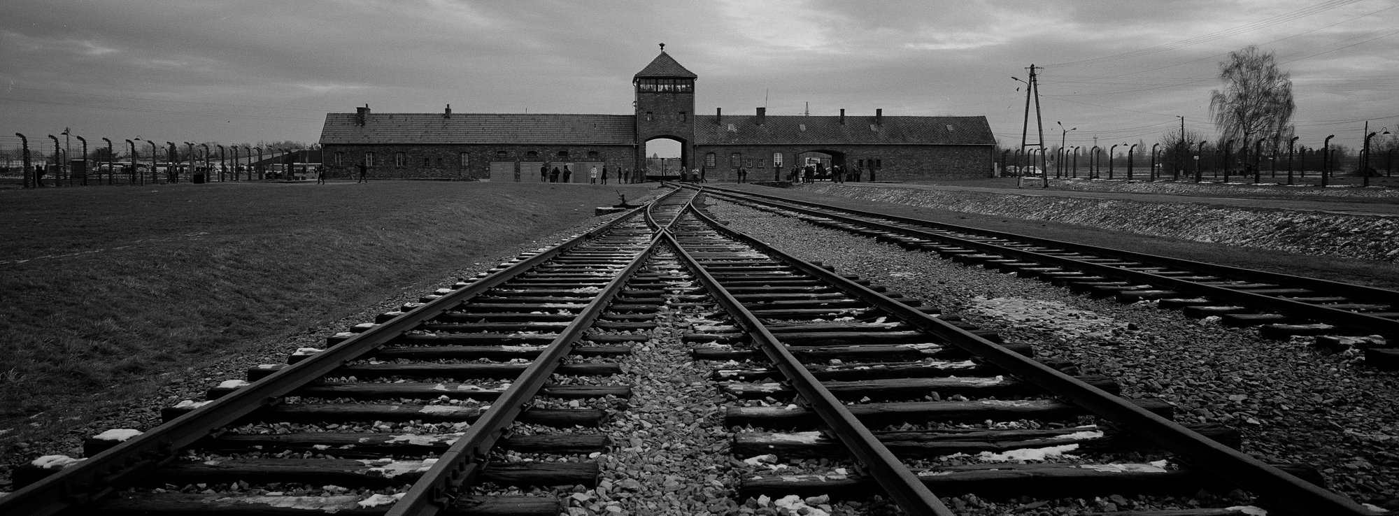 Image result for auschwitz liberation