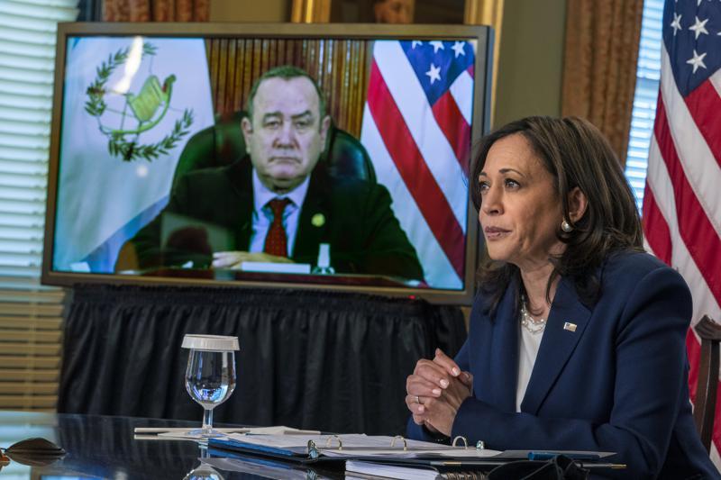 Vice President Kamala Harris meets virtually with Guatemalan president