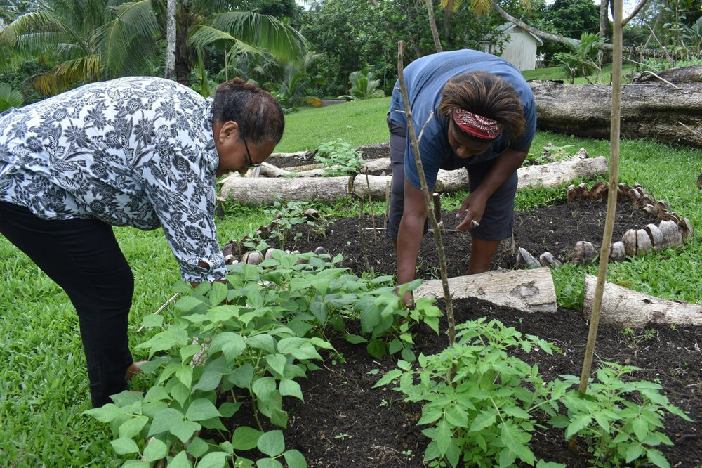 Amid pandemic, Pacific islanders begin community initiatives to help alleviate food shortages