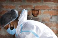 A girl looks out through a hole in the wall of her house as a health worker prepares for COVID-19 testing in Jamsoti village, Uttar Pradesh state, India, on June 9, 2021. India's vaccination efforts are being undermined by widespread hesitancy and fear of the jabs, fueled by misinformation and mistrust. That's especially true in rural India, where two-thirds of the country's nearly 1.4 billion people live. (AP Photo/Rajesh Kumar Singh)
