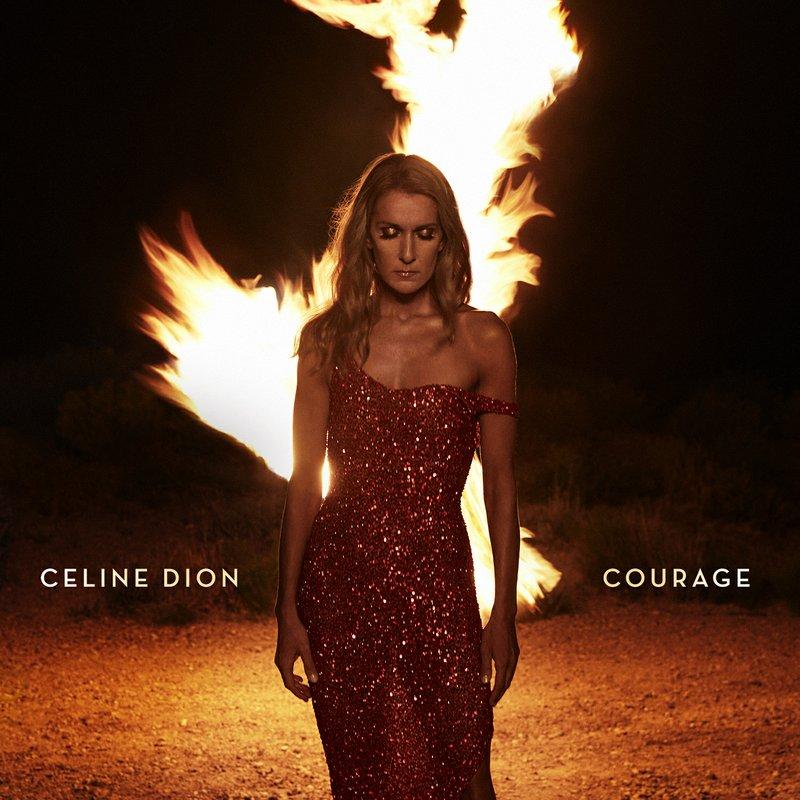 Image result for celine dion courage