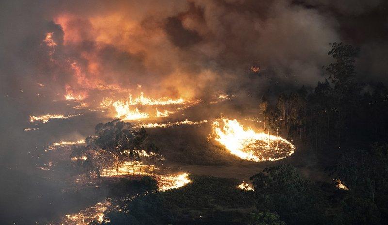 Αποτέλεσμα εικόνας για australia fires