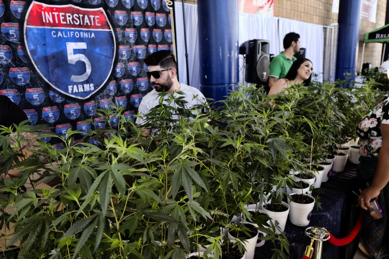 California Sales Tax Los Angeles >> California Pot Taxes Tick Up But Miss Initial Projections