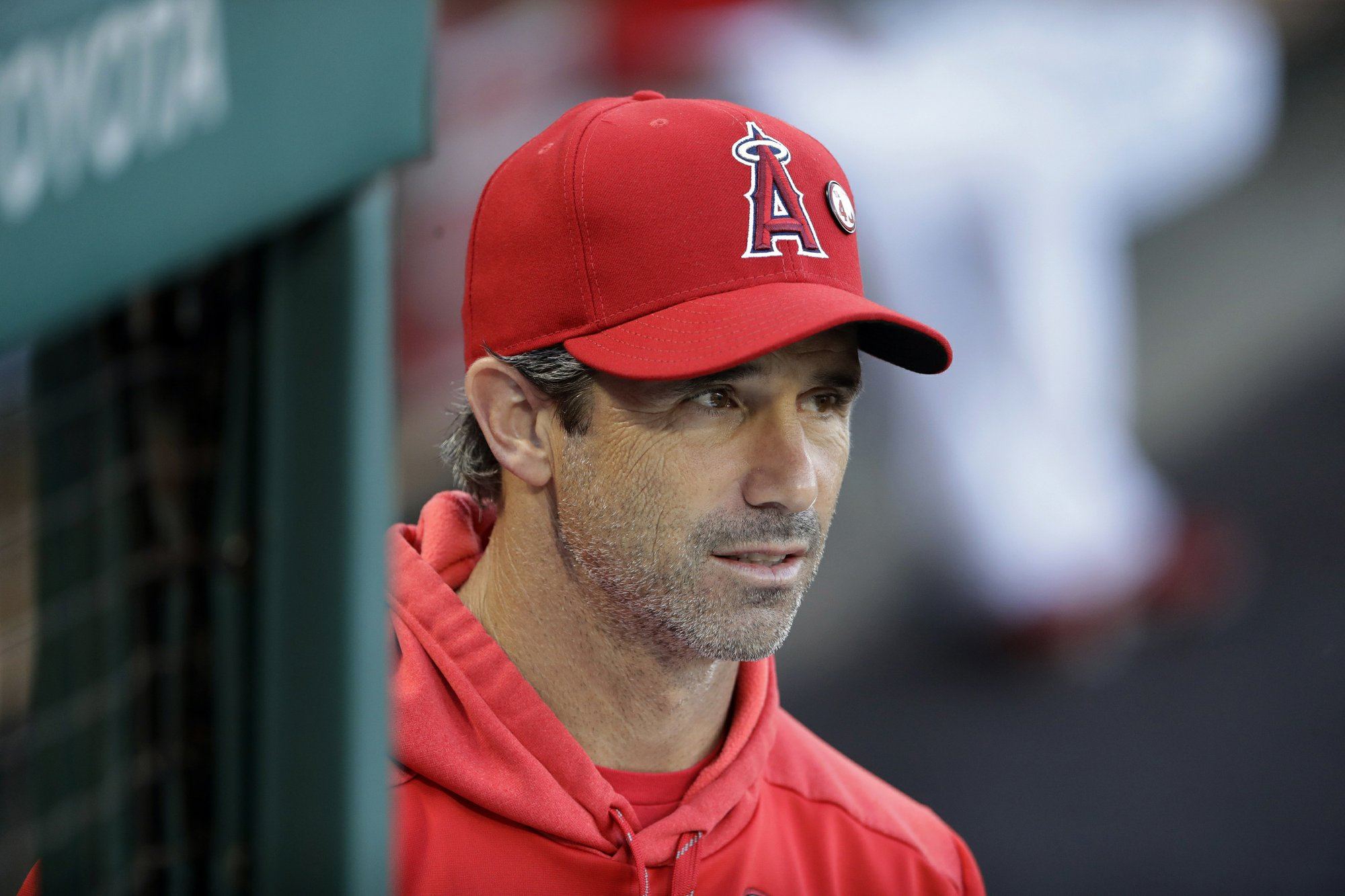 Eppler: Angels' manager search will not be limited to Maddon