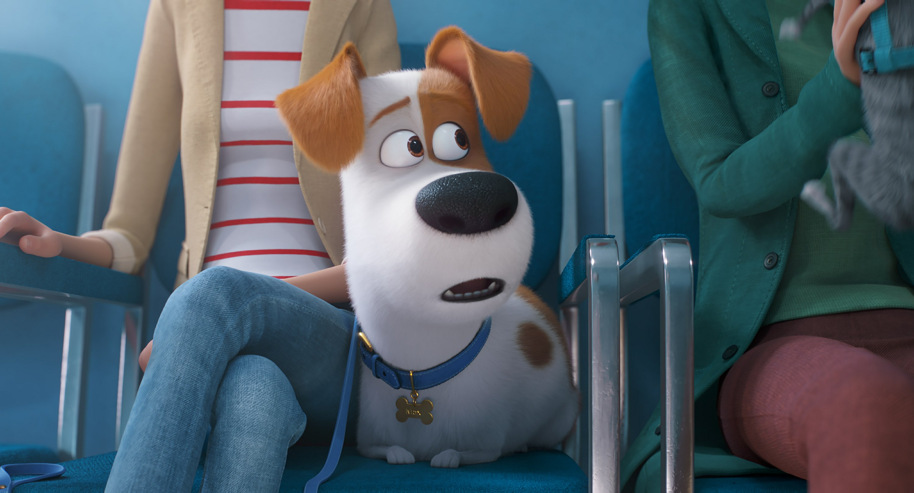 Review The Secret Life Of Pets 2 Is A Well Crafted Sequel