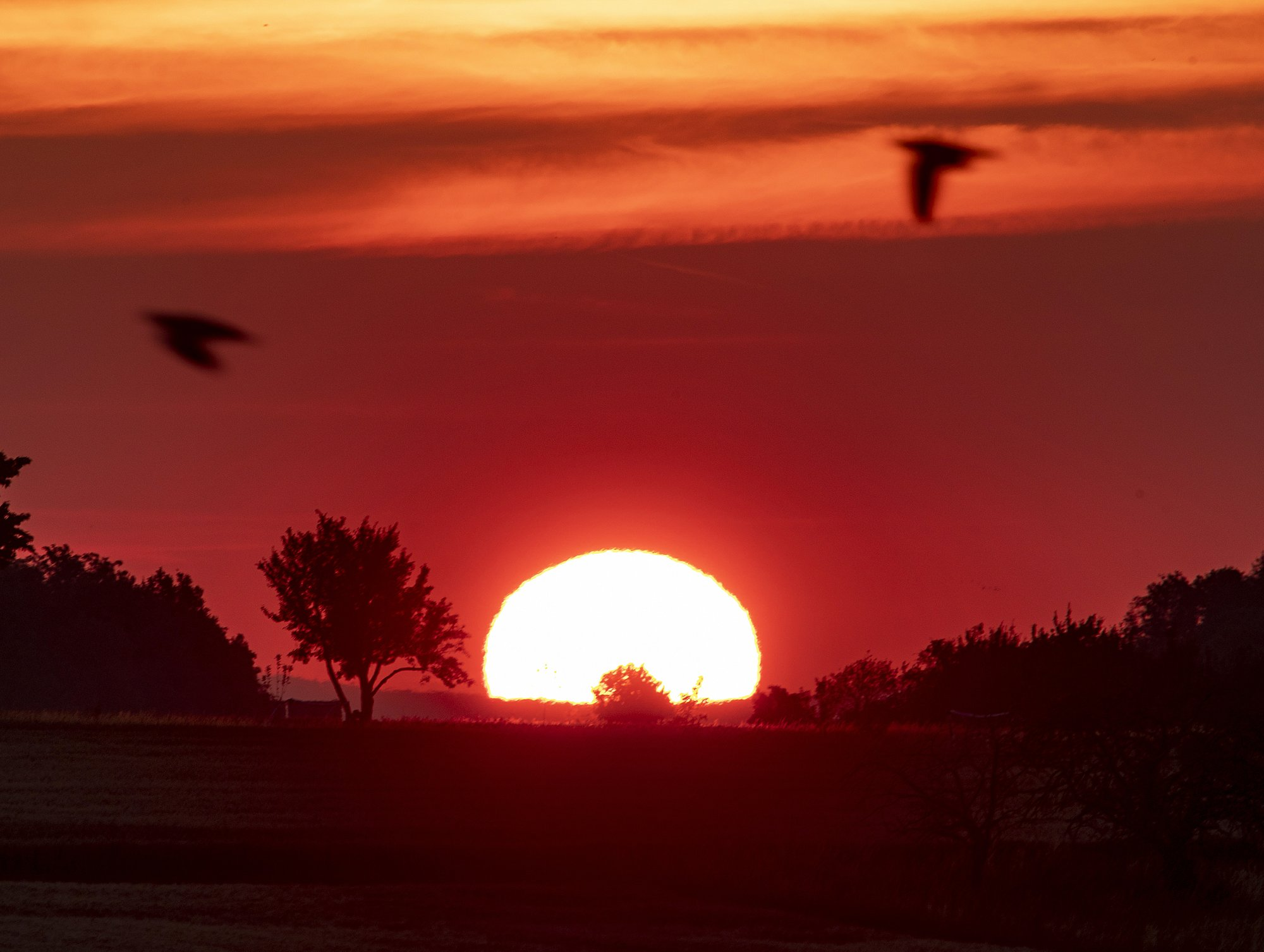 Intense heat wave to strike Paris, shimmer across Europe