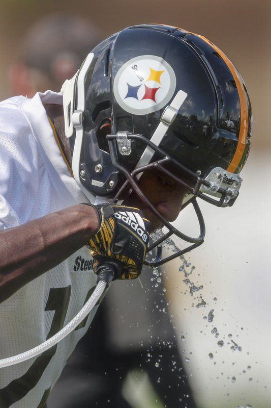 low priced 330ed ab01b Farm Hand; Blue-collar roots shape Steelers WR Washington