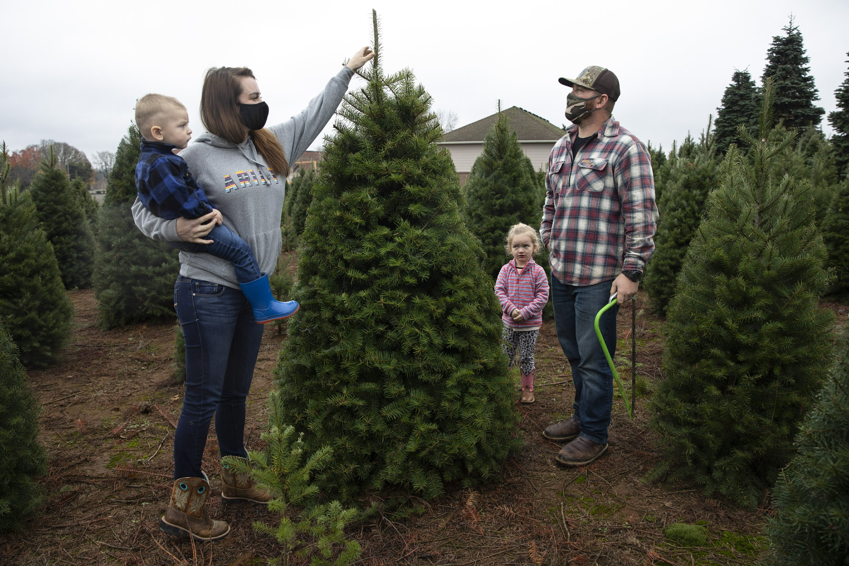 Many turn to real Christmas trees as bright spot amid virus