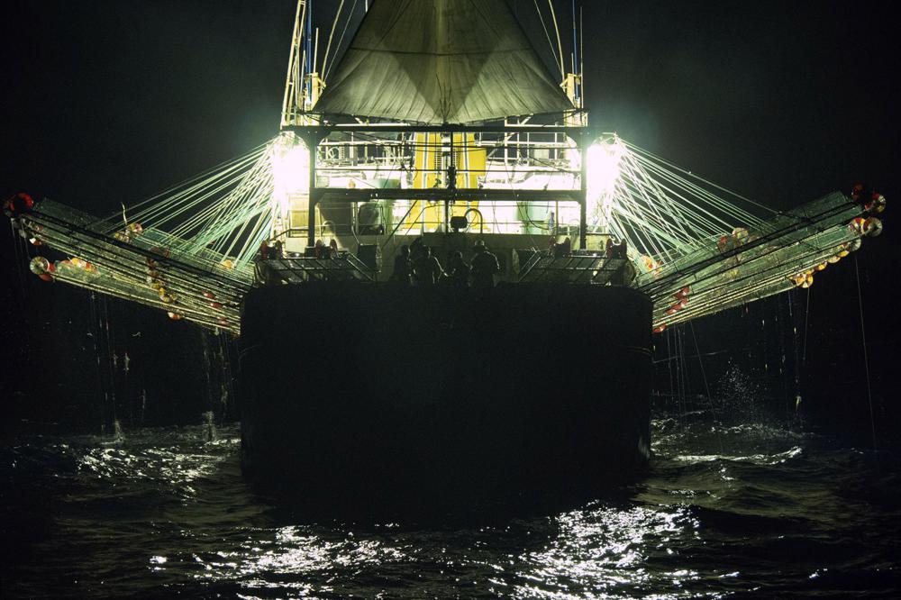 En esta foto de julio de 2021, proporcionada por Sea Shepherd, se ve a un barco de bandera china que pesca calamares en la noche en altamar fuera de la costa oeste de Sudamérica. El número de barcos con bandera china en el Pacífico sur ha aumentado casi 10 veces, de 54 barcos activos en 2009 a 557 en 2020, según la Organización Regional de Ordenación Pesquera del Pacífico Sur (South Pacific Regional Fisheries Management Organization, o SPRFMO, por sus siglas en inglés), un grupo intergubernamental de 15 miembros encargados de asegurar la conservación y pesca sostenible de las especies. Mientras tanto, el tamaño de su pesca ha aumentado de 70.000 toneladas en 2009 a 358.000.  (Isaac Haslam/Sea Shepherd vía AP)