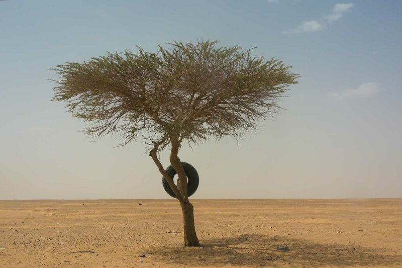 A tire used as a road marker hangs from a tree in Niger's Tenere desert region of the south central Sahara on Sunday, June 3, 2018. On the map, it links Algeria's Mediterranean coast to the distant Atlantic shore in Nigeria. Along the way, however, the Trans-Sahara highway frequently deteriorates from black tar into sand tracks. (AP Photo/Jerome Delay)