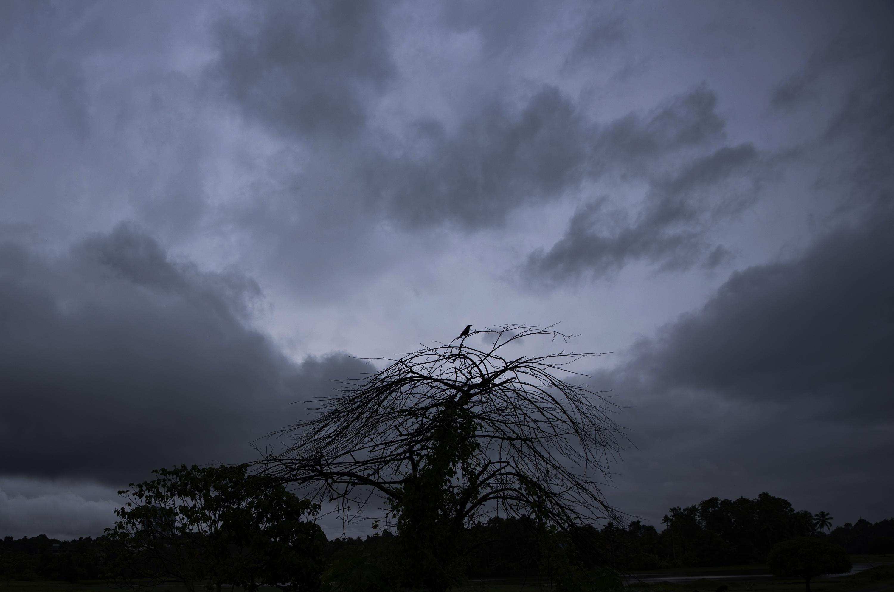 Heavy rains, floods leave 8 dead, 12 missing in south India