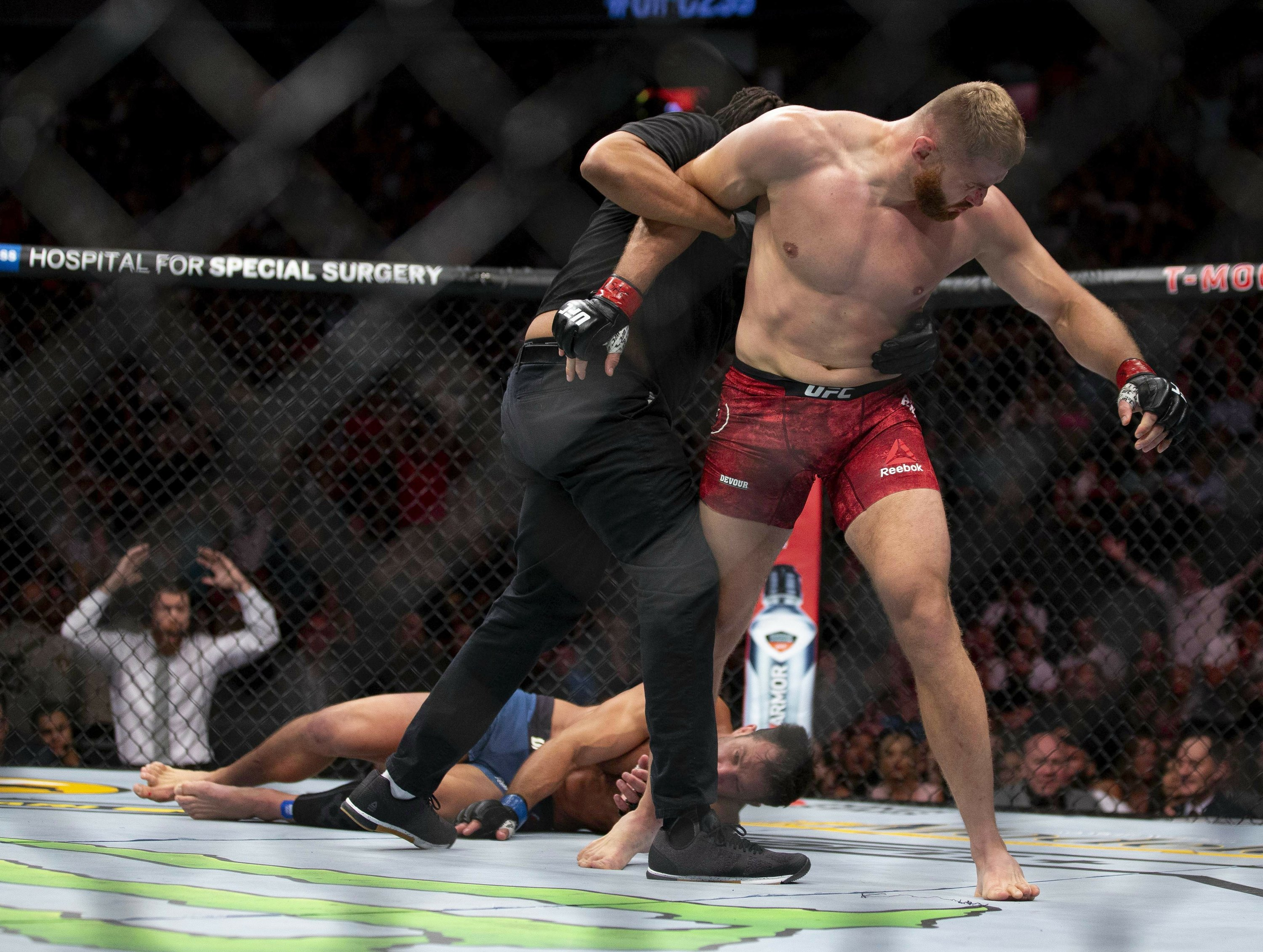 Image result for ufc 239 jan blachowicz knockout