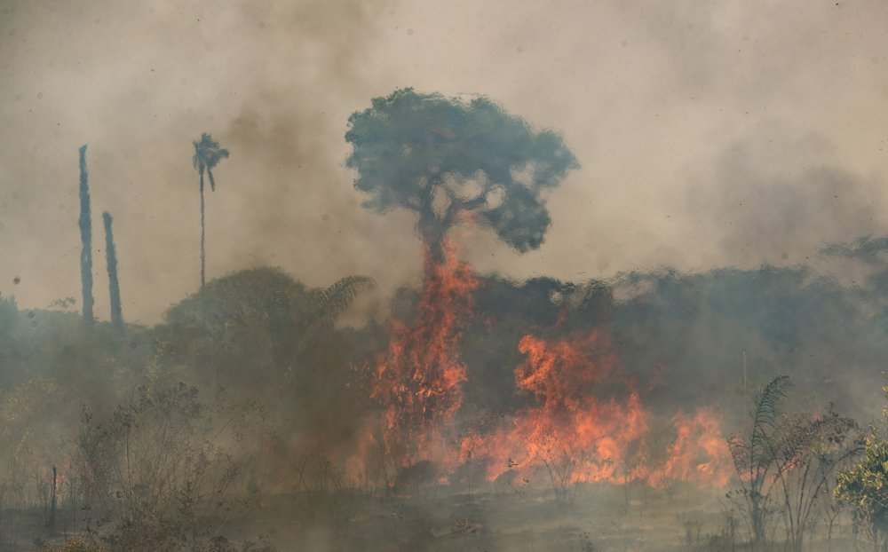 Brazilian Amazon continues to burn in 2020 despite promises to save it