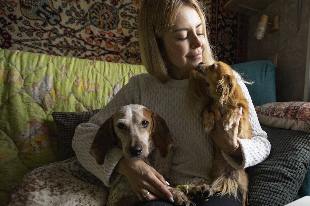Some dogs find new homes and friends during coronavirus loakdown