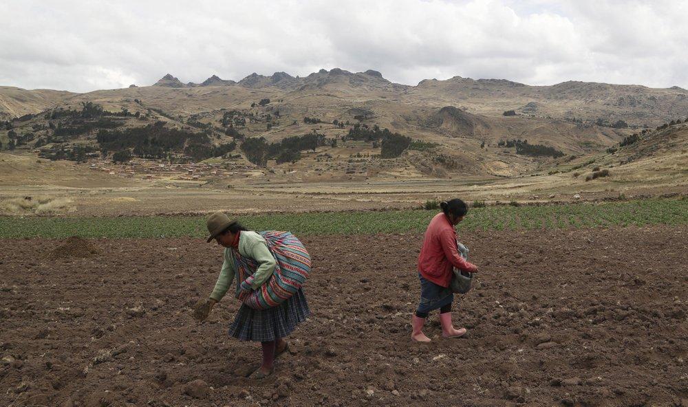 Coronavirus pandemic pushes Peru's vital peasant farmers to the brink