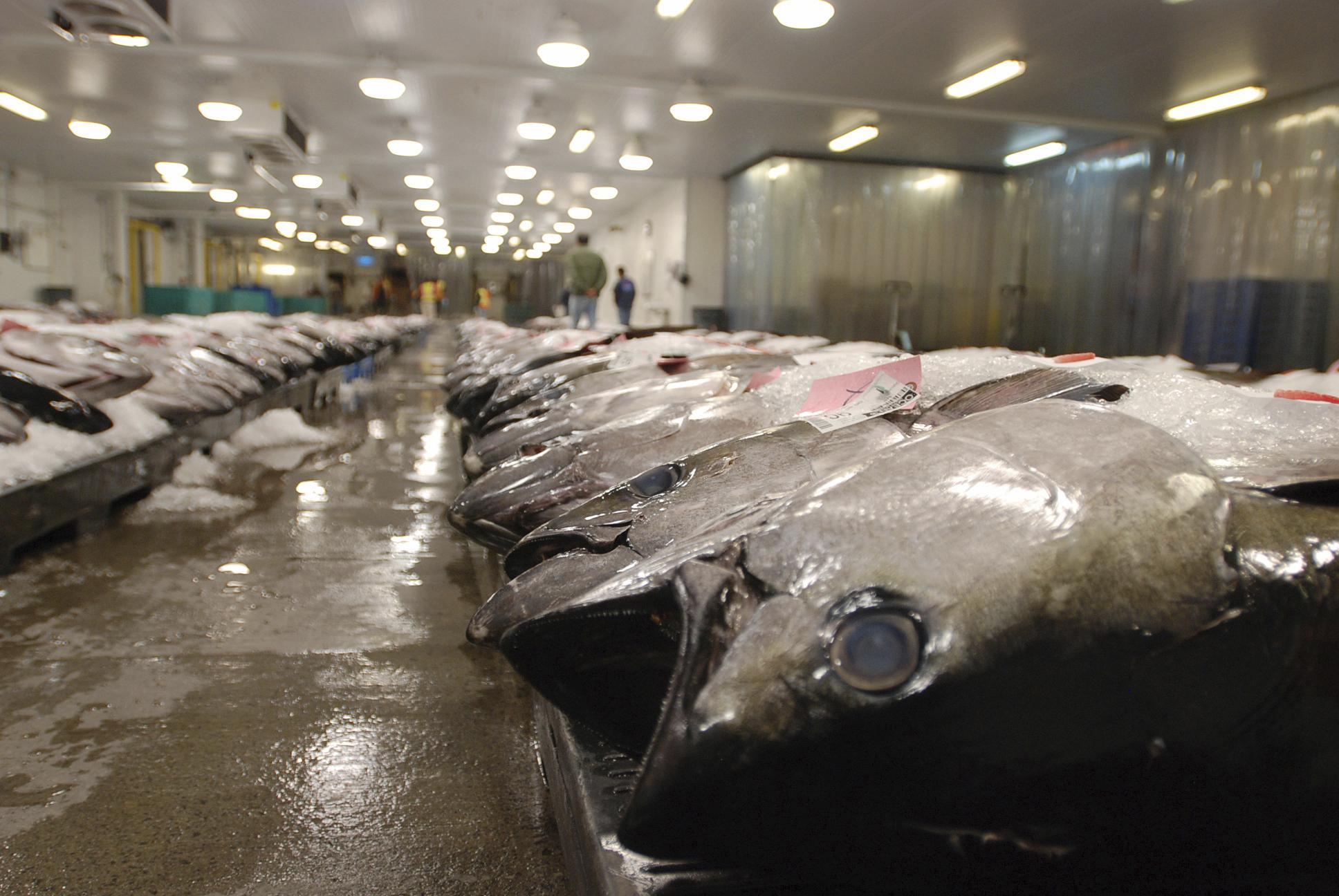apnews.com: US blocks seafood from Fiji ship accused of enslaving crew
