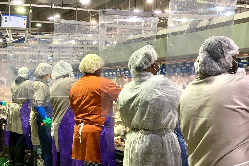 Trabajadores de una planta de procesamiento de carne Tyson Foods en Georgia usando medidas de protección y prevención contra el coronavirus