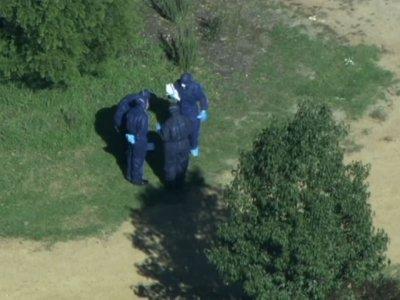 Family of Seven Found Shot Dead in Australia