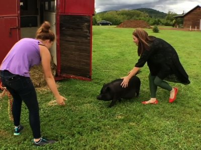Fla. Woman Juggles Evacuation with Animal Family