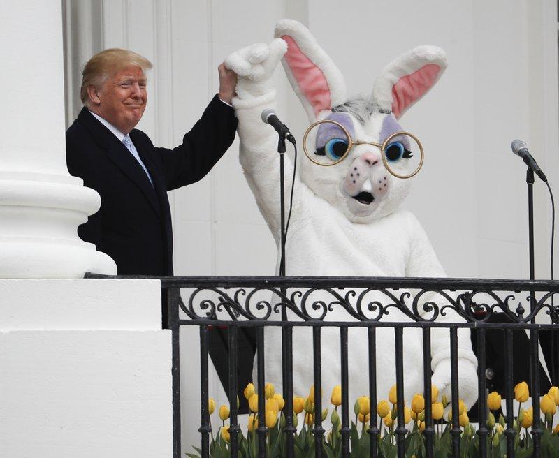Resultado de imagem para trump rabbit