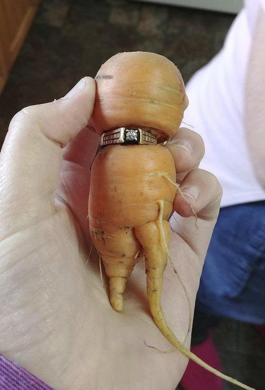 Mujer Encuentra En Una Zanahoria Anillo Extraviado Hace Anos A una cuadra del parque los ccoritos y de la av. zanahoria anillo extraviado