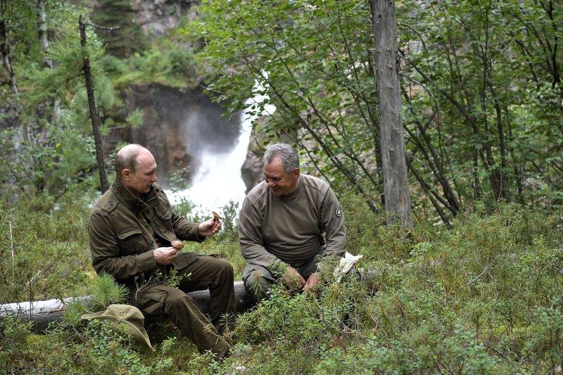 Vladimir Putin, Sergei Shoigu