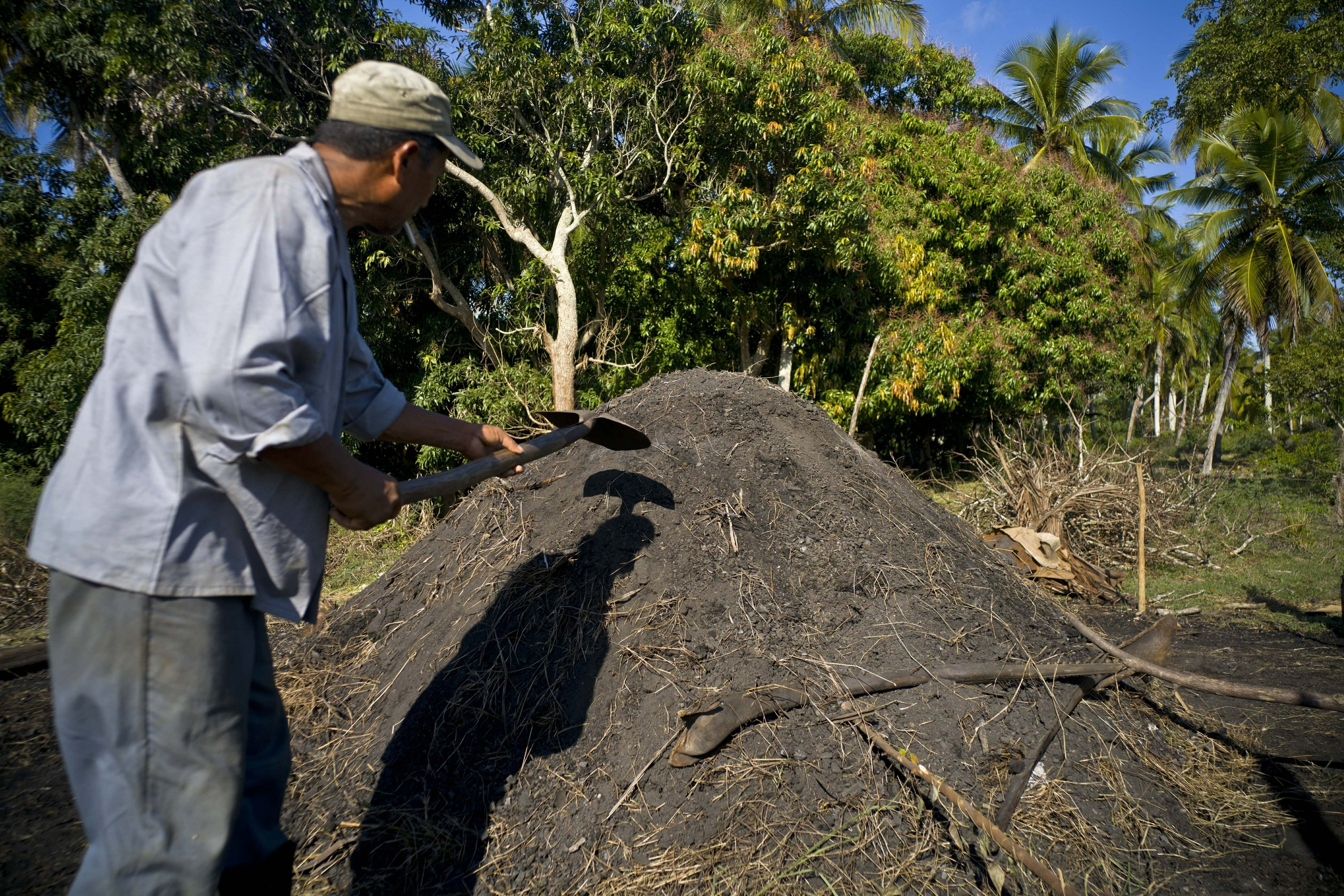 Artisanal marabu charcoal to become 1st Cuban export to US