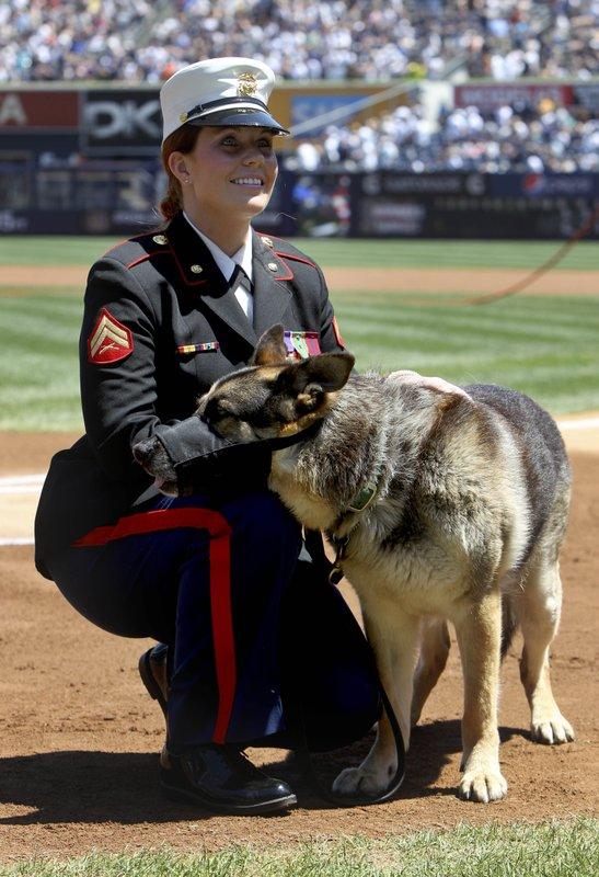 Megan Leavey, Sgt. Rex