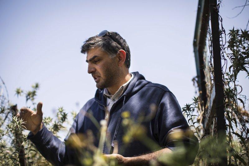Sharhabil bin Hassneh Eco Park - Jordan