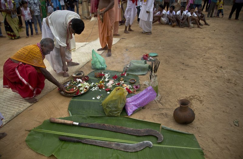 In this Thursday, Sept. 28, 2017 photo, Indian priests perform rituals near swords before an animal sacrifice at a temple of Hindu goddess Durga at Rani village on the outskirts in Gauhati, Assam state, India. Participants in the five-day Durga Puja festival believe the sacrifices bring prosperity and good health. But in some parts of India, religious animal sacrifices are banned.