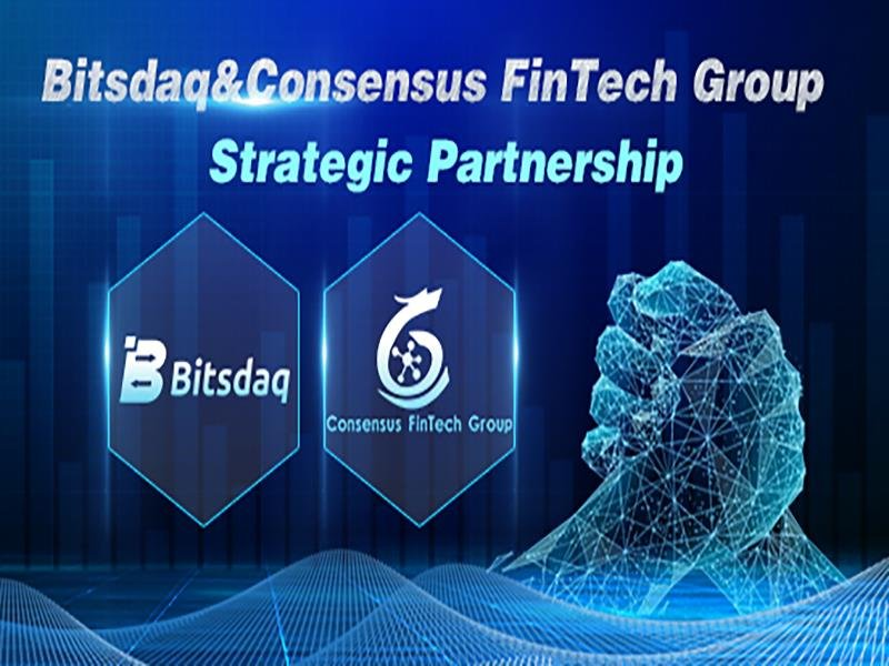 bitsdaq cryptocurrency exchange sign up
