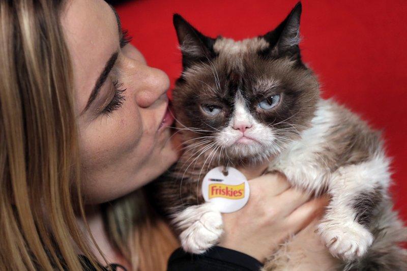 Grumpy Cat, Tabatha Bundesen