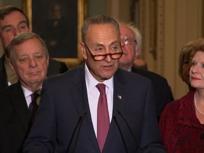 Schumer: 'You Can't Flinch' After Election Loss